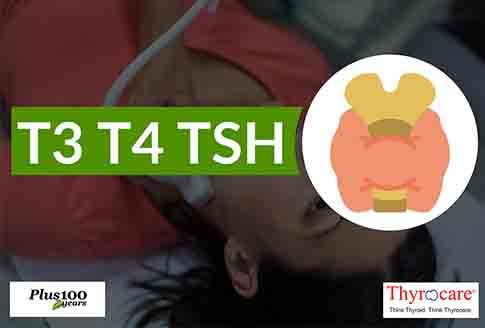 T3 T4 TSH THYROID